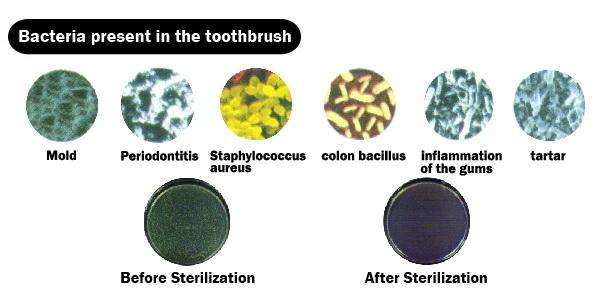 Sterilizer_toothbrush